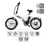 Nilox ebike X1- Bicicleta Eléctrica, Unisex...