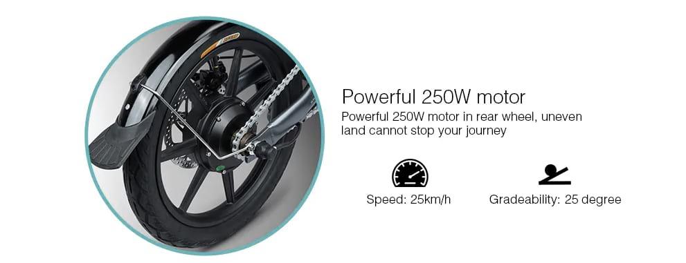 motor 250w