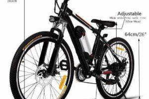 Hiriyt bici china