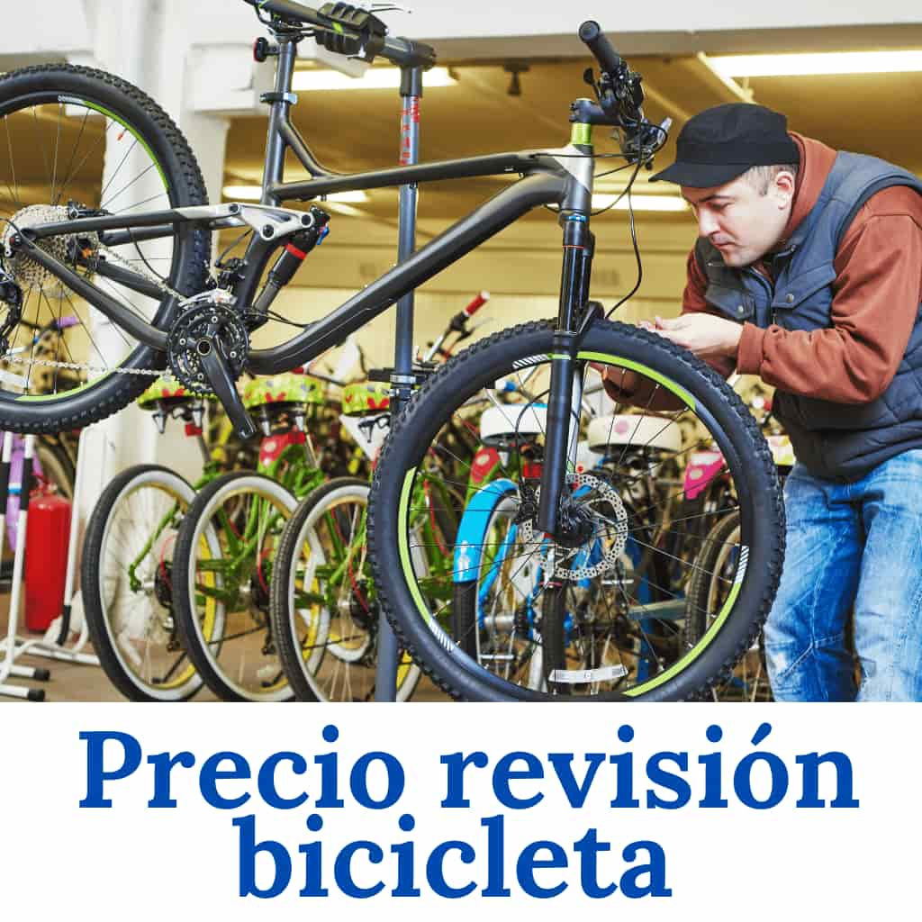 revisión bicicleta precio